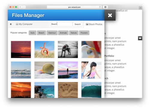 Website File Manager