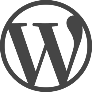 Custom WordPress Plugin Development