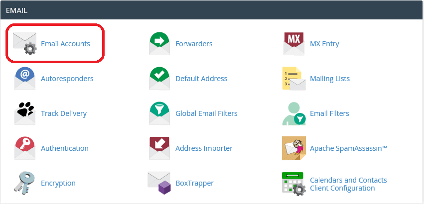 View email accounts in cPanel